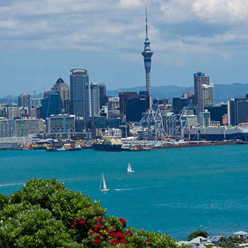 New Zealand Assignment Help